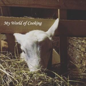 Lilli, die Ziege
