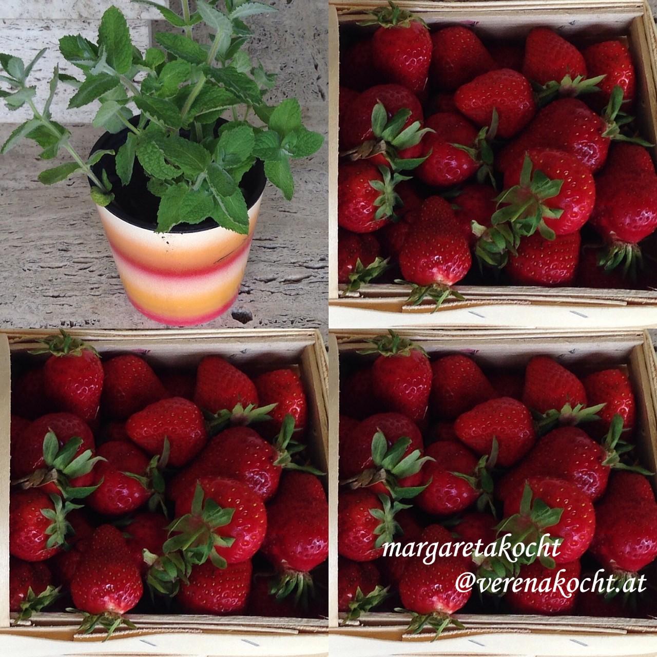 kalt ger hrter fruchtaufstrich von der erdbeere oder wieso der fruchtikus einpacken kann. Black Bedroom Furniture Sets. Home Design Ideas