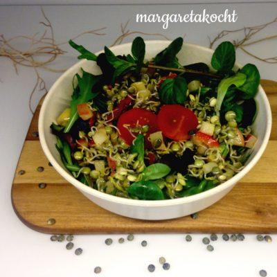 vegetarische Salat Bowl mit Linsen-Keimlingen (oder) im Frühling sprießen jede Menge Ideen
