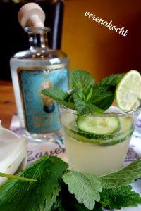 Gin-Tonic mit Gurke & Limette