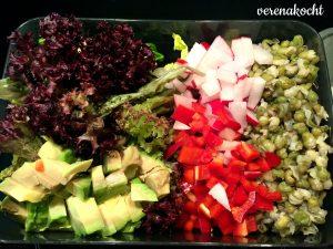 Salat - Avocado - Paprika - Radieschen - Mungobohnen