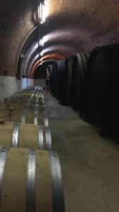 Weinkeller (Weingut Hagn)
