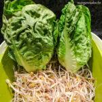 gebratene Salatherzen auf Mungosprossen