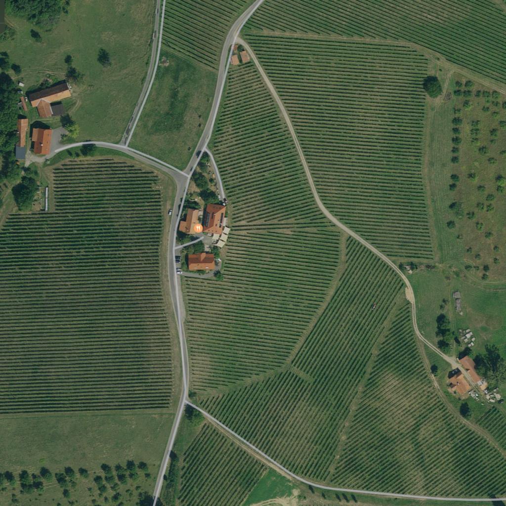 Weingut KÖGL, Ratsch (Südsteiermark)